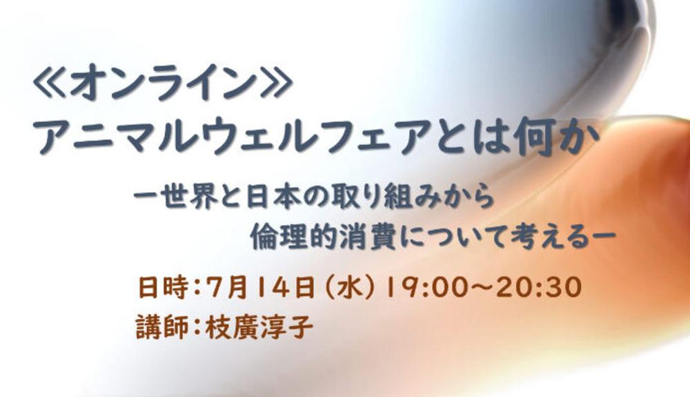 【終了しました】7/14開催:≪オンライン≫アニマルウェルフェアとは何か ー世界と日本の取り組みから倫理的消費について考えるー